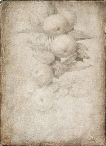 manzanas en rama sobre papel by victor koulbak