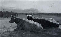 cattle resting by adolphe vogt