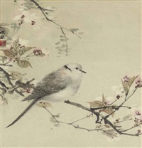 dove in spring by fei chengwu