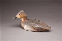 canvasback hen by lemuel t. and stephen ward