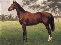 pferdeportrait auf besonnter lichtung by oscar merte