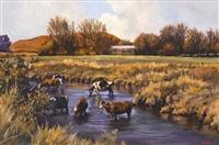 cattle drinking, kamberg by ted (tjeerd adriaanus johannes) hoefsloot