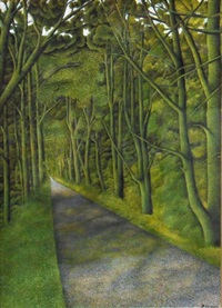 view of a forest path by james lloyd