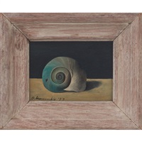 snail shell spiral by gertrude abercrombie
