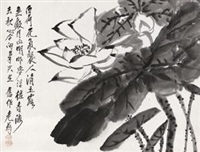 墨荷 by tang yun