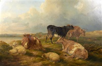 cattle and sheep by john charles morris