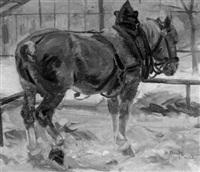 pferdebildnis by walter bondy