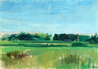 summer landscape by søren hjorth-nielsen
