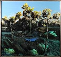waterhole by ken johnson