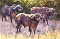 three buffalo in a bush scene by zakkie (zacharias) eloff