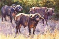 three buffalo in a bush scene by zakkie (zacharias) eloff
