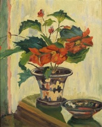 potted poinsettia by alfred s. mira