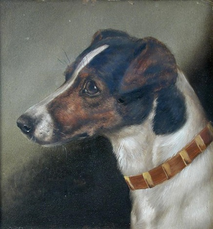 fox terriers (+ another; pair of studies) by edward aistrop