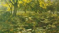 paesaggio boschivo by guido boggiani