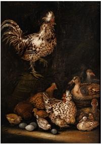 tierstück mit hahn, hühnern, enten und eiergelegen by petrus schotanus