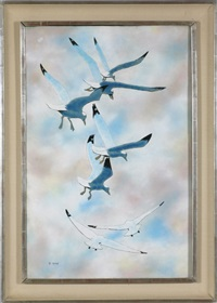 seagulls in descent by max karp