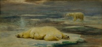polar bears on an ice flow by cuthbert edmund swan