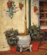 plants in a patio by jules adler