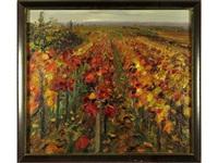 campo de flores by gonzalo bilbao martínez