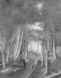 waldpartie auf dem seelisberg im kanton uri by kaspar kaesli