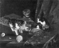 schnuppernde kätzchen an einer offenen sardinenbüchse by f. krantz