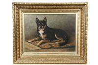 dog on oriental rug by percy a. sanborn