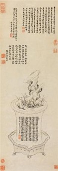 奇石菖蒲 by xiang yuanbian