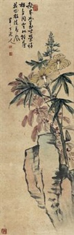 菊石图 by chen banding
