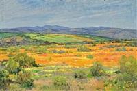 lente in namakwaland by piet (pieter gerhardus) van heerden
