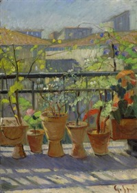 balcone fiorito by gaetano spinelli