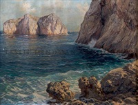 seascape with cliffs by michele federico