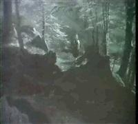 spaziergang im wald by franz leinecker
