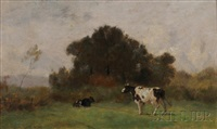 cows in a summer field by jean pezous