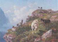 ziegen am felsigen hang im hochgebirge (berner oberland?) by heinrich fischer