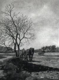pferdegespann auf dem feld by antal (august) liptai