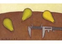 slide callipers and pear by seiichi kasai