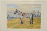 cresta, a saddled hunter by dorothy and elizabeth alderson