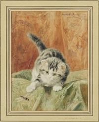 katt lekandes med trollslända by henriette ronner-knip