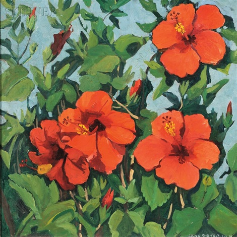 hibiscus by jane peterson