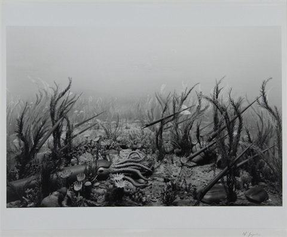 ordovician period by hiroshi sugimoto