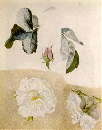 a study of flowers (+ 26 others; 27 works) by emile-charles labbé