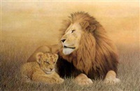 a lioness with her cub by sally hynard