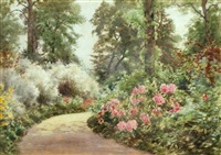 white broom and pink pearl rhododendrons, sandringham by cyril ward