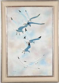 sea gulls in descent by max karp