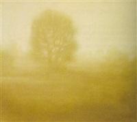 landschaft mit baum by peter ritzer