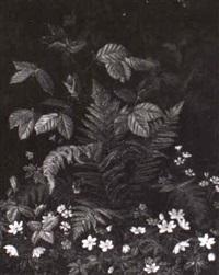 vilde blomster by e. remmer
