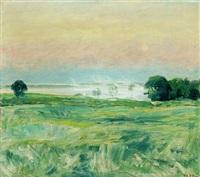 hazy meadow by sigurd swane
