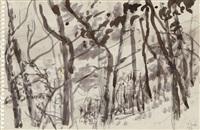 schellenberger wald (baldeneysee) (double-sided) by paul thek