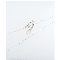 vireo on barbed wire (from pictures of wire) by vik muniz