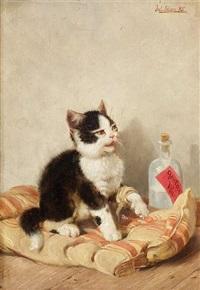 ein kleines kätzchen sitzt mit verbundener pfote auf einer matratze by julius adam (unattributable)